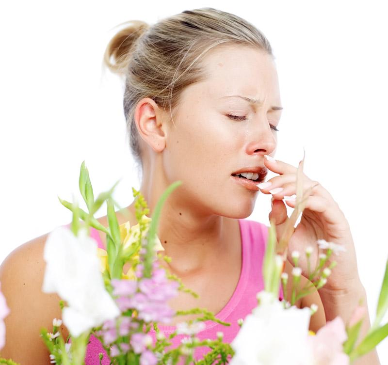 аллергия - мифы или реальность